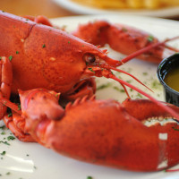 How to Steam Lobster (and How to Eat Lobster!)
