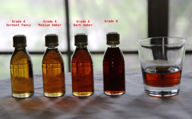 maple syrup grades image