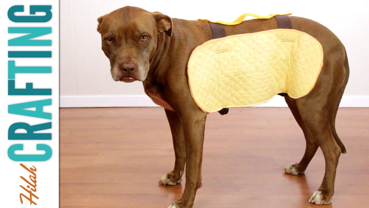 Circumference Of A Hot Dog