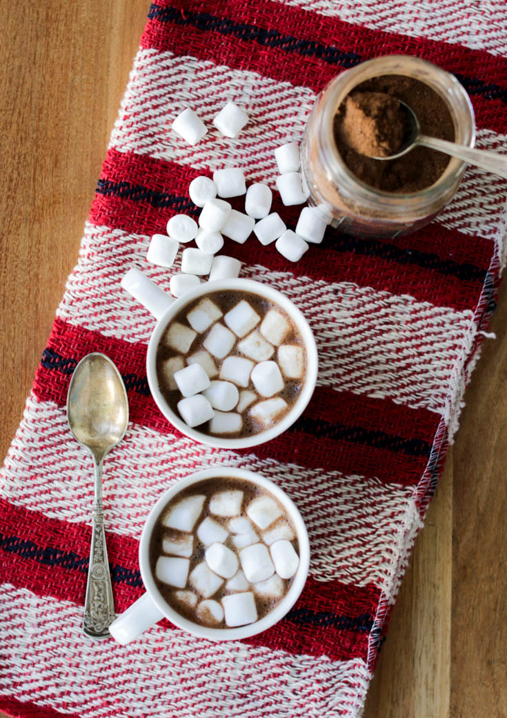 homemade-hot-chocolate-mix